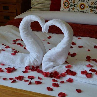 Thumb towel swan