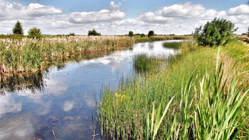 Medium crop rural retreats wild goose lodge
