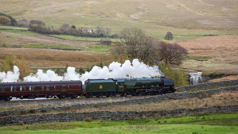 Medium crop settle railway